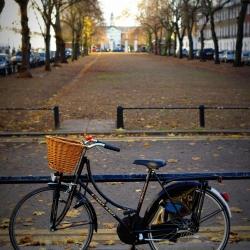 chelsea_square_bike
