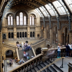 south_kensington_natural_history_museum