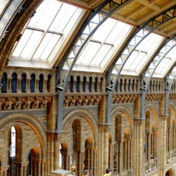 south_kensington_natural_history_museum_1