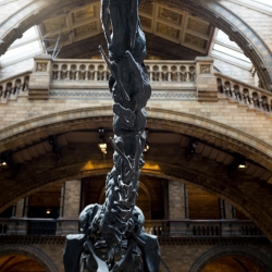 south_kensington_natural_history_museum_dinosaur