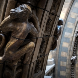 south_kensington_natural_history_museum_monkey