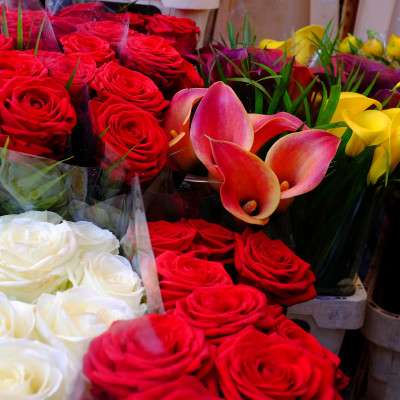 columbia-road-flower-market-7